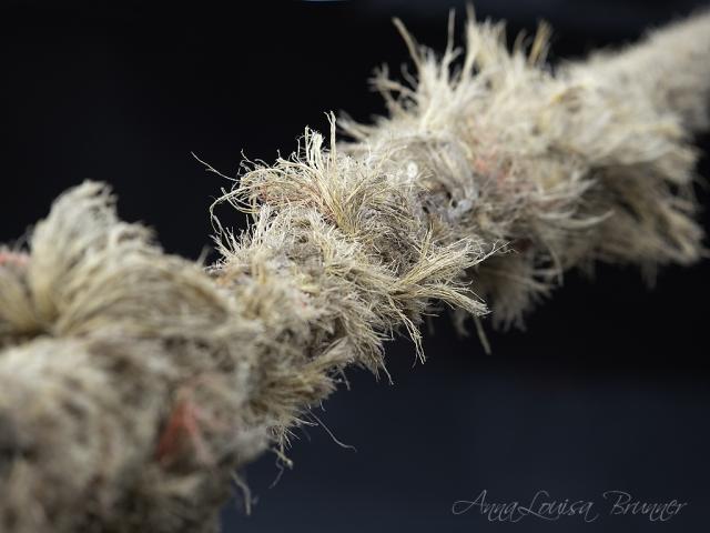das Seil